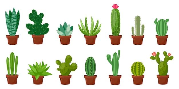 Conjunto de ilustração de cacto verde no deserto ou sala