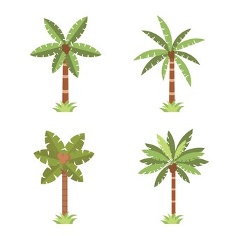 Conjunto de ilustração de coleção de pacote de plantas verdes de palmeiras