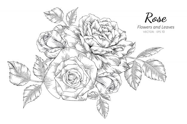 Conjunto de ilustração de desenho de flor rosa com arte de linha