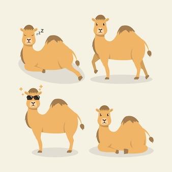 Conjunto de ilustração de desenho de mascote de camelo do deserto