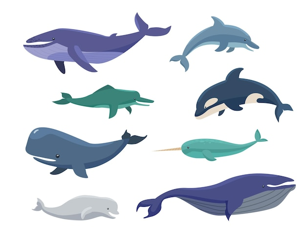 Conjunto de ilustração de desenhos animados de baleias, cabeças de bowling, narvais e orcas