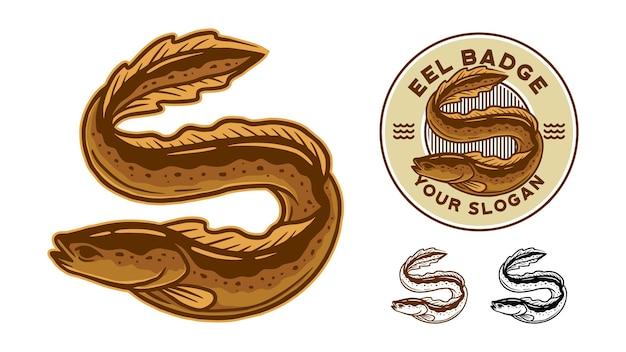 Conjunto de ilustração de enguia