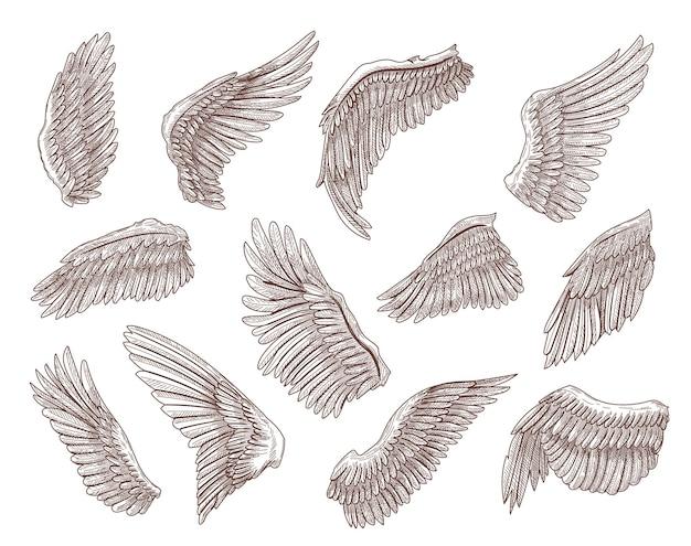 Conjunto de ilustração de esboços gravados com asas de pássaro ou anjo