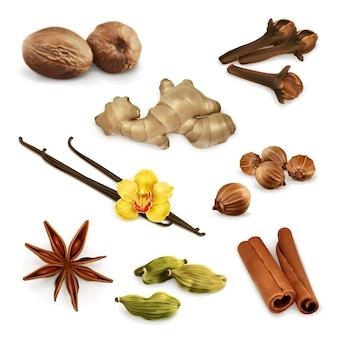 Conjunto de ilustração de especiarias e condimentos