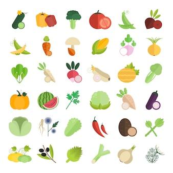Conjunto de ilustração de legumes