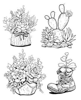 Conjunto de ilustração de linha de suculentas de cacto