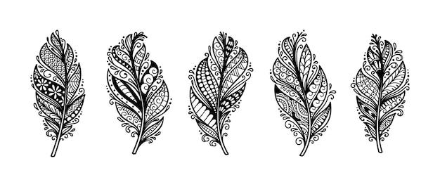 Conjunto de ilustração de penas decorativas incomparáveis