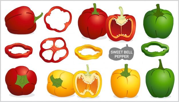 Conjunto de ilustração de pimentão doce