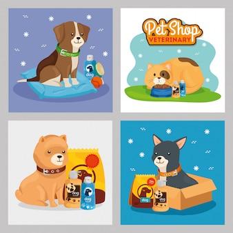 Conjunto de ilustração de veterinária de pet shop