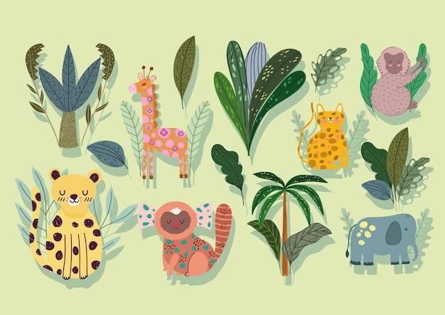 Conjunto de ilustração dos desenhos animados da vida selvagem da selva abstrata
