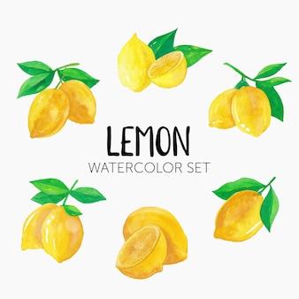 Conjunto de ilustração em aquarela de limão