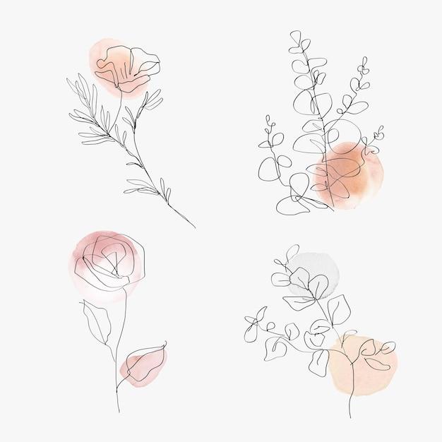 Conjunto de ilustração mínima botânica aquarela flores linha arte vetorial