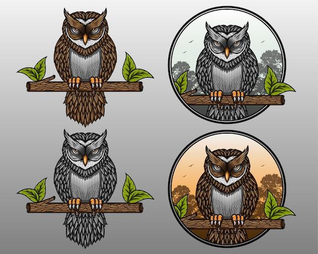 Conjunto de ilustração vetorial de bela coruja. coruja na selva. coruja zangada