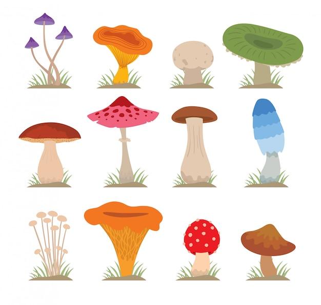 Conjunto de ilustração vetorial de cogumelos