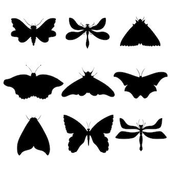 Conjunto de ilustração vetorial desenhada à mão de mariposas borboletas noturnas