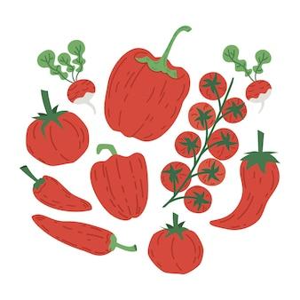 Conjunto de ilustração vetorial desenhada de vegetais vermelhos, tomate, pimenta e rabanete.
