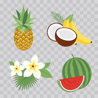 Conjunto de ilustração vetorial ícones frutas tropicais com folhas e flores. conjunto de ilustrações vetoriais de moda isoladas em xadrez transparente.