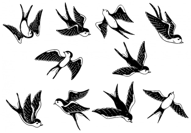 Conjunto de ilustrações de andorinha mão desenhada sobre fundo branco. elementos para cartaz, cartão. imagem