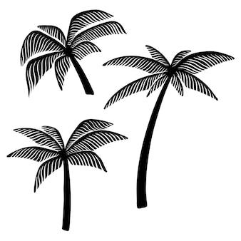 Conjunto de ilustrações de árvore de palma da mão desenhada.