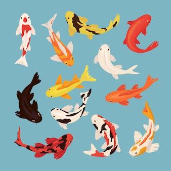Conjunto de ilustrações de carpas de carpas de desenhos animados
