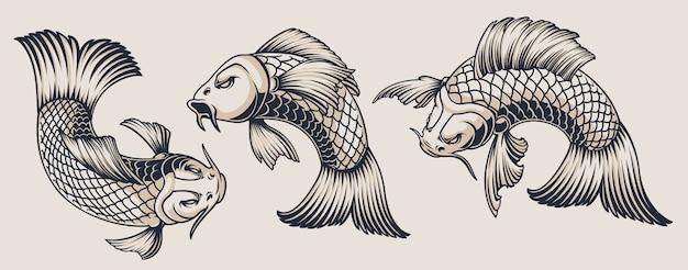 Conjunto de ilustrações de carpas koi em um fundo branco. todas as ilustrações estão em grupos separados. conveniente para mudar de cor e usar separadamente.