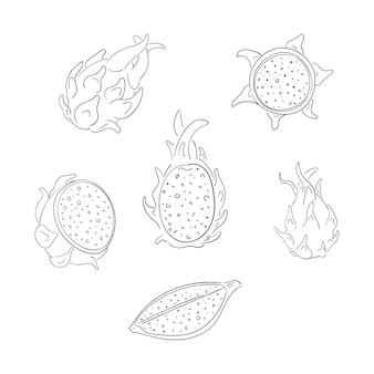 Conjunto de ilustrações de contorno de frutas de dragão inteiro e fatiado