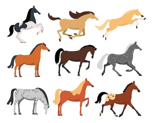 Conjunto de ilustrações planas de cavalos de raças diferentes