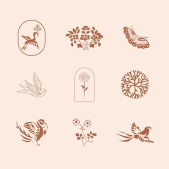 Conjunto de ilustrações vintage de elementos de design de marca natural