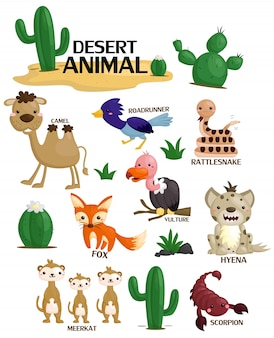 Conjunto de imagens de animais no deserto