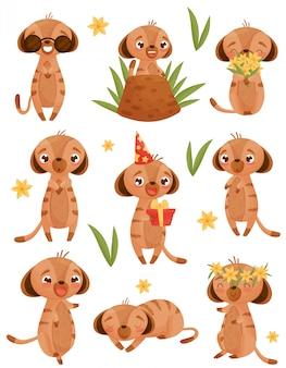 Conjunto de imagens de esquilos em estilo cartoon. ilustração em fundo branco.