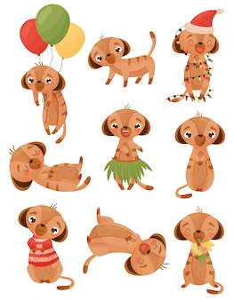 Conjunto de imagens de esquilos humanizados. ilustração em fundo branco.