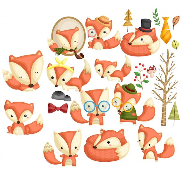 Conjunto de imagens de raposa hipster