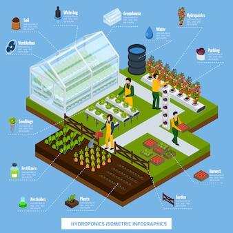 Conjunto de infográfico hidroponia e aeroponics