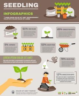 Conjunto de infográficos de mudas