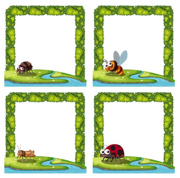 Conjunto de inseto no quadro