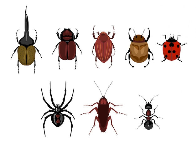 Conjunto de insetos bonito dos desenhos animados. conjunto de insetos rastejantes - formiga, aranha, besouro, barata, joaninha. besouros diferentes em um fundo isolado.