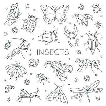 Conjunto de insetos do doodle.