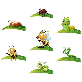 Conjunto de insetos dos desenhos animados, sentado em uma folha