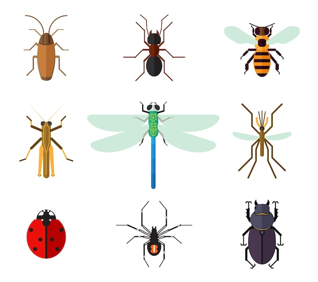 Conjunto de insetos em estilo simples.