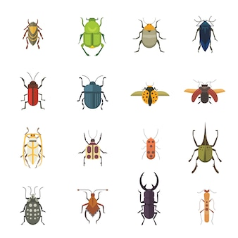 Conjunto de insetos estilo plano vector design ícones. besouro da natureza da coleção e ilustração dos desenhos animados da zoologia. conceito de vida selvagem de ícone de bug
