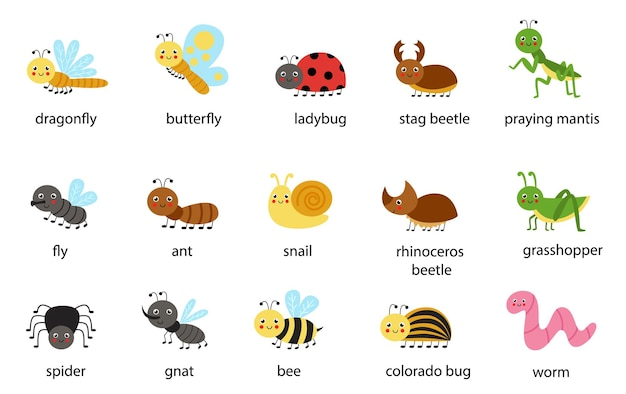 Conjunto de insetos fofos com seus nomes. coleção de ilustrações infantis.