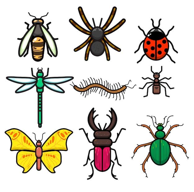 Conjunto de insetos