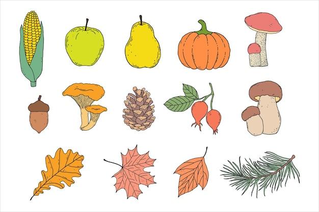 Conjunto de itens de outono desenhados à mão