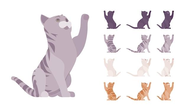 Conjunto de jogo de gato de pedigree listrado branco, preto, laranja, cinza. gatinho ativo e saudável com pelo bonito, animal de estimação engraçado e fofo, companheiro lúdico em casa. vistas diferentes da ilustração vetorial de estilo simples dos desenhos animados