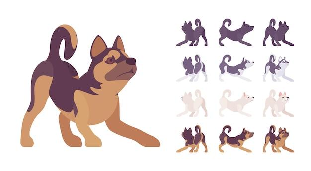 Conjunto de jogo preto, cão branco, husky, pastor