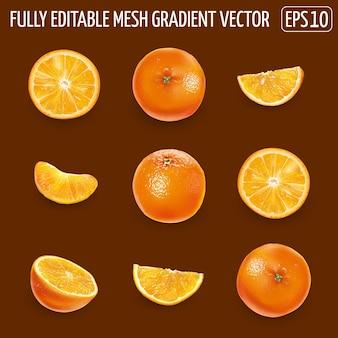 Conjunto de laranjas maduras