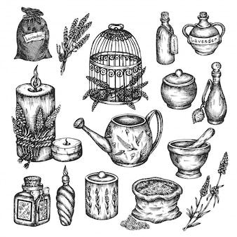 Conjunto de lavanda isolado na mão branca ilustrações desenhadas.