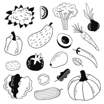 Conjunto de legumes doodle desenhado à mão
