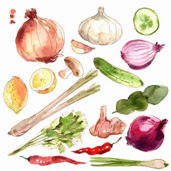 Conjunto de legumes frescos.