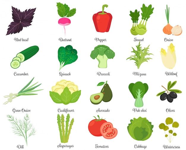 Conjunto de legumes saborosos